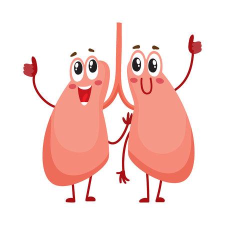 Par de lindos y divertidos, sonrientes personajes de pulmón humano, ilustración vectorial de dibujos animados aislado sobre fondo blanco. Personajes de pulmón humano sano, elemento de cuidado de la salud del sistema respiratorio
