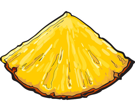 Unpeeled pineapplewedge, triangular slice, sifde view, sketch style vector illustration isolated on white background. Realistic hand drawing of fresh, ripe pineapple wedge or slice