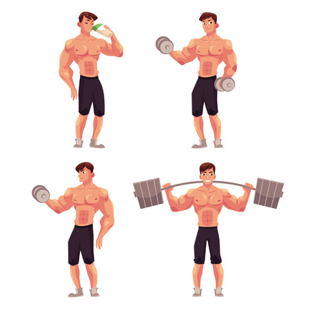 Young man, male bodybuilder, weightlifter working out with barbell and dumbbell, drinking protein shake, cartoon vector illustration isolated on white background.