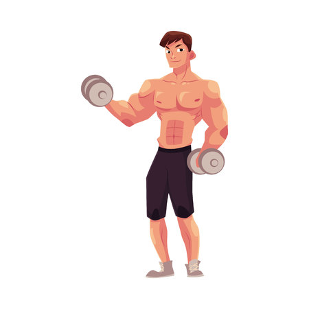 Young man, male bodybuilder, weightlifter doing bicep workout, training arms with two dumbbells, cartoon vector illustration isolated on white background. Male bodybuilder doing bicep workout