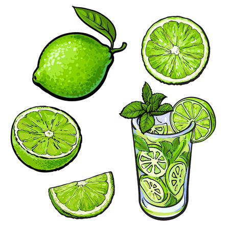 Set of whole, half, quarter lime and glass of lemonade with ice, sketch style vector illustration on white background. Whole and cut lime and glass of lemonade with ice