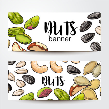 Banners with cashew, sunflower, pumpkin seeds, pistachio, Brazil nuts and place for text, sketch vector illustration on white background. Banner, label design, decoration element Illustration