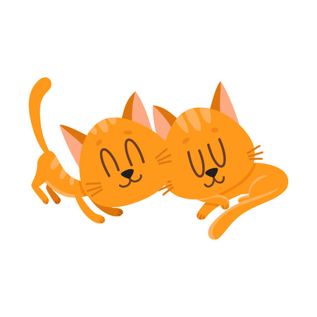 Two cute and funny cat characters sleeping together, cartoon vector illustration isolated on white background. Couple of cute sleeping, napping, dreaming little red cat, kitten characters