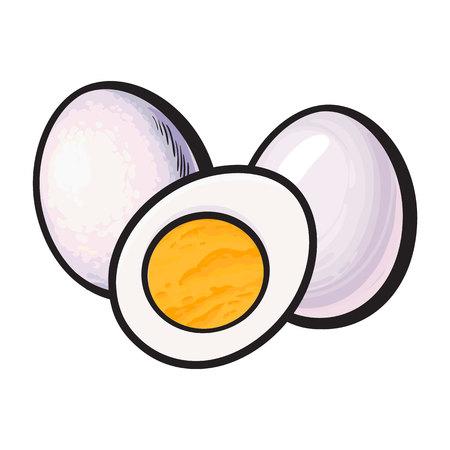 Gekookt, gepeld kippenei, geheel en gesneden in de helft, schets stijl vectorillustratie geïsoleerd op een witte achtergrond. Hand getrokken, getekende illustratie, geheel en de helft van hard gekookt kippenei Stock Illustratie
