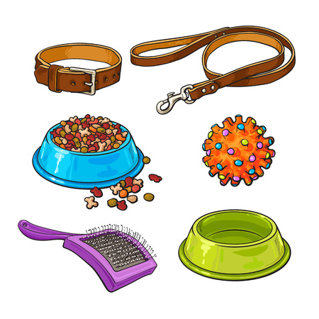 personal grooming: Set of pet, cat, dog accessories full and empty bowl, collar, leash, rubber ball, hairbrush, sketch vector illustration isolated on white background. Hand drawn pet accessories on white background