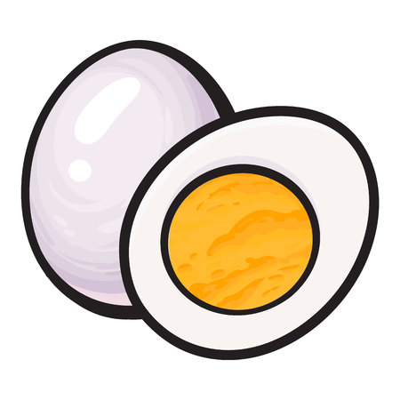 Boiled, peeled chicken egg, whole and cut in half, sketch style vector illustration isolated on white background. Hand drawn, sketched illustration, whole and half of hard boiled chicken egg