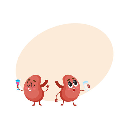 Pair of cute and funny healthy human kidney characters drinking milk and wine, cartoon vector illustration with space for text. Couple of healthy human kidney characters with drinks