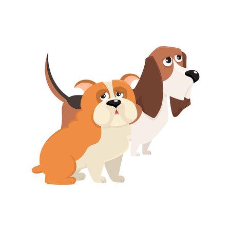 Couple of cute, funny dog characters - purebred basset hound and English bulldog. Illustration