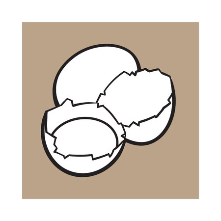 brown egg: Cracked, broken and spilled chicken egg, sketch style vector illustration isolated on brown background. Hand drawn, sketched raw, uncooked chicken egg and halves of eggshell