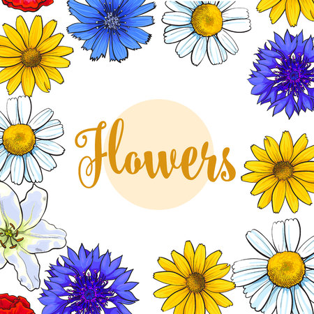 Square banner, greeting card with top view summer flowers and place for text, sketch vector illustration on white background. Hand drawn realistic flowers as square frame, banner, label design Çizim