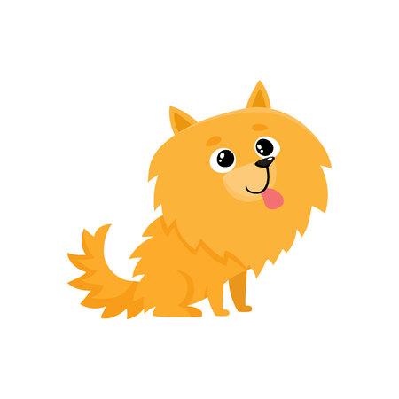 かわいい少し長い髪ポメラニアン、スピッツ犬文字、漫画のベクトル図は白い背景上に分離。ニースとフレンドリーな小さなスピッツ犬の性格、ポ  イラスト・ベクター素材