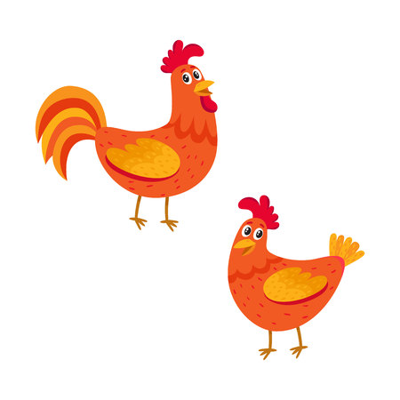 Cute and funny couple of farm rooster and hen, two chicken, cartoon vector illustration isolated on white background. Cute cartoon, comic style red and orange farm rooster, hen, chicken Vektoros illusztráció
