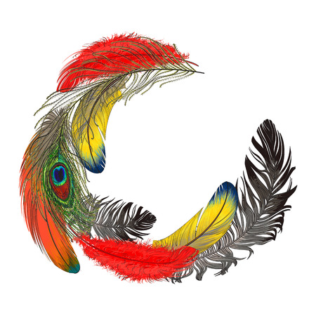 Round half frame formed by colorful bird feathers with empty space for text, sketch style vector illustration on white background. Hand drawn tropical bird feathers as round frame, decoration element