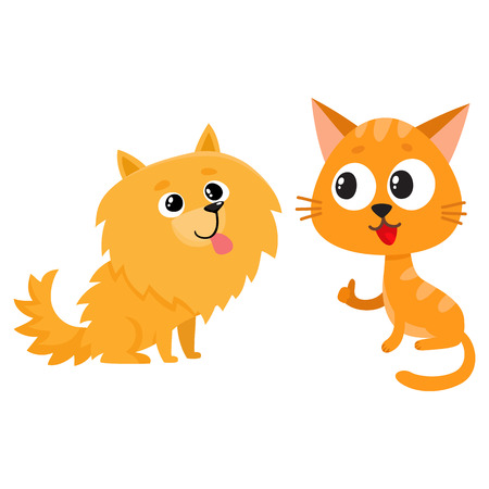 Pomeranian spitz dog and red cat, kitten characters, friendship concept, cartoon vector illustration isolated on white background. Lovely spitz dog and red cat characters, friends playing together Illustration