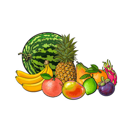 Tropical fruits - grapefruit orange lemon watermelon mango dragon fruit pineapple papaya banana mangosteen, sketch vector illustration on white background. Hand drawn set of tropical fruits Illustration