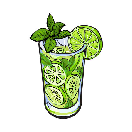 Tall glass full of freshly squeezed cold lime juice with ice and straw, sketch style vector illustration on white background. Alcoholic cocktail with lime