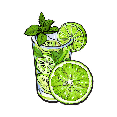 Half lime and glass of freshly squeezed juice, mojito, cocktail with ice and mint, sketch vector illustration isolated on white background.