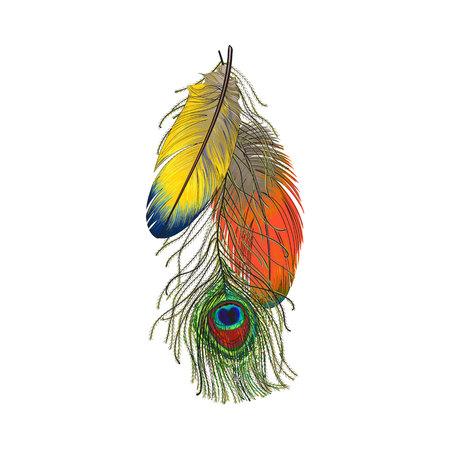 Hand gezeichneter Satz bunte Vogelfedern, Papageien und Pfau, Skizzenart-Vektorillustration auf weißem Hintergrund. Realistische Handzeichnung von bunten Pfau- und Papageienvogelfedern