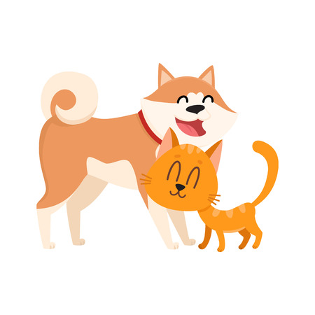 akita: Akita inu dog and red cat, kitten characters, love, friendship concept, cartoon vector illustration isolated on white background. Lovely akita dog and red cat characters, love, friendship, tenderness
