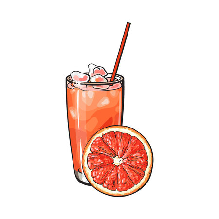 Grapefruit slice and glass of freshly squeezed juice with ice and straw, sketch style vector illustration on white background. Hand drawn glass of grapefruit juice with ice and grapefruit slice