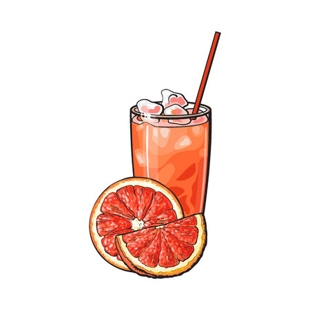Grapefruit half, piece and glass of juice with ice and straw, sketch style vector illustration on white background. Hand drawn glass of grapefruit juice, grapefruit cut in half and quarter piece