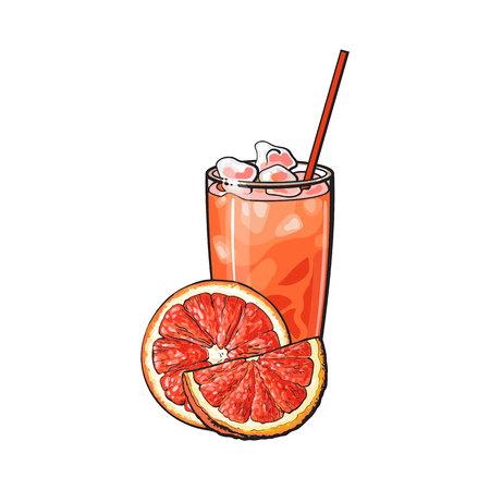 Half grapefruit, stuk en glas sap met ijs en stro, de vectorillustratie van de schetsstijl op witte achtergrond. Hand getrokken glas grapefruitsap, grapefruit in tweeën gesneden en kwart stuk