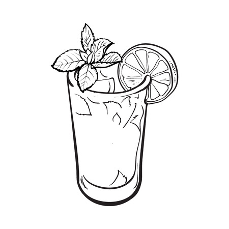 freshly: Tall glass full of freshly squeezed cold lime juice with ice and straw, sketch style vector illustration on white background. Alcoholic cocktail with lime