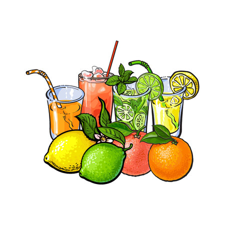 Orange, grapefruit, lime, lemon juice and fruits, hand drawn sketch vector illustration on white background. Hand drawing of orange, grapefruit, lemon, lime juice in glasses and whole fruits