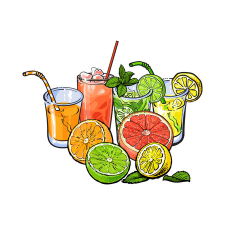 Orange, grapefruit, lime, lemon juice and fruits, hand drawn sketch vector illustration on white background. Hand drawing of orange, grapefruit, lemon, lime juice in glasses and fruits cut in half
