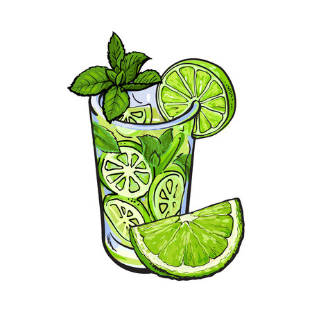 rum: Lime quarter, piece and glass of freshly squeezed juice, mojito, cocktail with ice and mint, sketch vector illustration isolated on white background. Hand drawn glass of lime juice and lime quarter Stock Photo