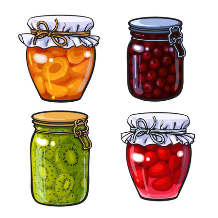 confiture: Set of apricot, cherry, strawberry and kiwi jam, marmalade in traditional jars, sketch style vector.