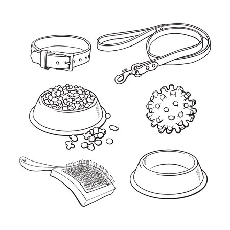 Set of pet, cat, dog accessories full and empty bowl, collar, leash, rubber ball, hairbrush, black and white sketch style vector illustration.