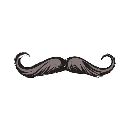 Human hipster curled up mustache, decoration element, sketch style vector illustration isolated on white background. Realistic isolated hand drawing of human hipster style mustache