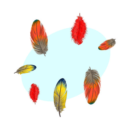 Hand drawn set of various colorful bird feathers, sketch style vector illustration with space for tex. Realistic hand drawing of peacock, parrot, dove, falcon bird feather Иллюстрация