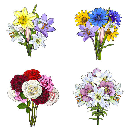 Bouquets, bunches of lily, rose, daffodil, cornflower, daisy, wild and garden flowers, sketch vector illustration isolated on white background. Hand drawn realistic flowers in bouqets and bunches Banco de Imagens