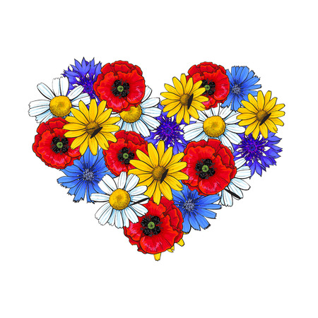 Wild flowers - poppy, chamomile, cornflower, daisy, heart shaped decoration element, sketch vector illustration isolated on white background. Hand drawn realistic wild flowers arranged in heart form