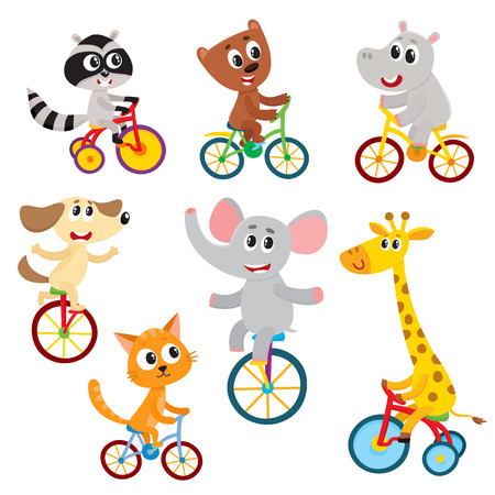Cute little animal characters riding unicycle, bicycle, tricycle, cycling, cartoon vector illustration isolated on a white background. Little baby animal characters riding bikes, bicycle Illustration