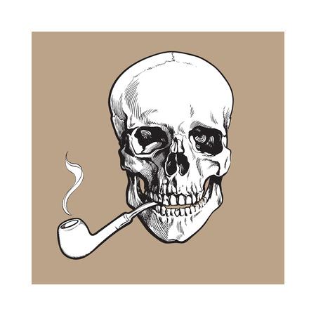 손으로 그려진 된 인간의 두개골 흡연 옻 칠한 나무 파이프, 흑백 스케치 스타일 벡터 일러스트 레이 션 갈색 배경에 고립. 담배 파이프와 두개골의 현 일러스트