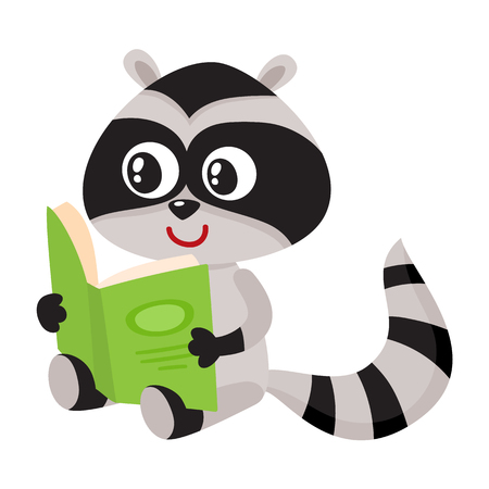 Cute little raccoon student character reading an interesting book, cartoon vector illustration isolated on white background. Little raccoon student reading big book, back to school concept