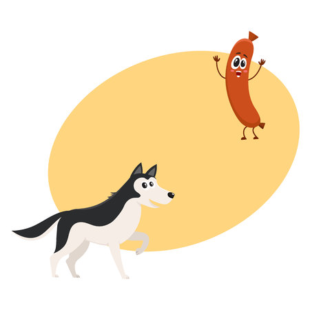 dog: Cute black and white Husky dog and sausage characters, cartoon vector illustration with space for text.