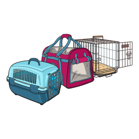 Three type of pet carrier, transport bag, plastic case, metal wire, sketch vector illustration isolated on white background.