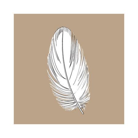 手描き下ろし smoth 黒と白の熱帯、エキゾチックな鳥、オウムの羽、茶色の背景のスタイル ベクトル図をスケッチします。リアルな手描きのオウム、  イラスト・ベクター素材