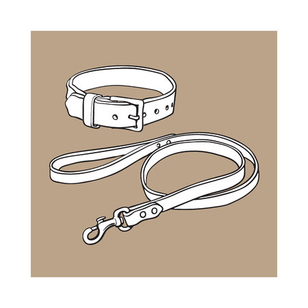 Simple pet, cat, dog buckle collar and leash made of thick brown leather, black and white sketch style vector illustration isolated on brown background. Illustration