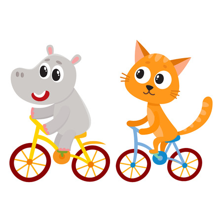 Cute little hippo and cat, kitten characters riding bicycles together, cartoon vector illustration isolated on white background. Baby hippo and cat, kitten animal characters riding bicycles, cycling