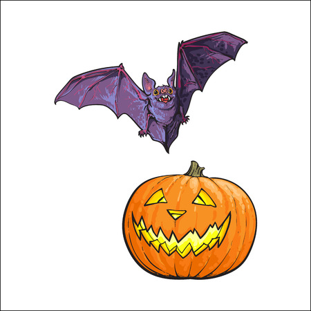 Hand drawn Halloween symbols - pumpkin jack o lantern and flying vampire bat, sketch vector illustration isolated on white background. Sketch style Halloween pumpkin, jack o lantern and flying bat