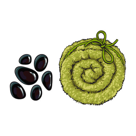Black basalt massage stones and Top view of rolled up fluffy green towel, spa salon accessory, cartoon vector illustration on white background. Realistic hand drawing of towel roll, spa salon Stock Photo