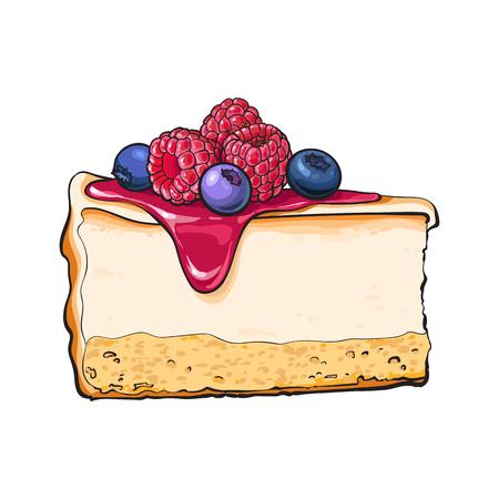 Hand getrokken stuk van cheesecake versierd met verse bessen, schets stijl vectorillustratie geïsoleerd op een witte achtergrond. Realistische handtekening van stuk, plak van cheesecake, kaastaart Vector Illustratie