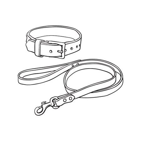 Un animal de compagnie simple, un chat, une boucle de boule de chien et une laisse en cuir marron épais, une illustration vectorielle de style croquis noir et blanc isolé sur fond blanc.