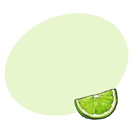 분기, 세그먼트, 잘 익은 녹색 라임, 손으로 그린 스케치 스타일 텍스트위한 공간 벡터 일러스트 레이 션. unpeeled grapefruit qurter의 손 그리기, 조각 일러스트