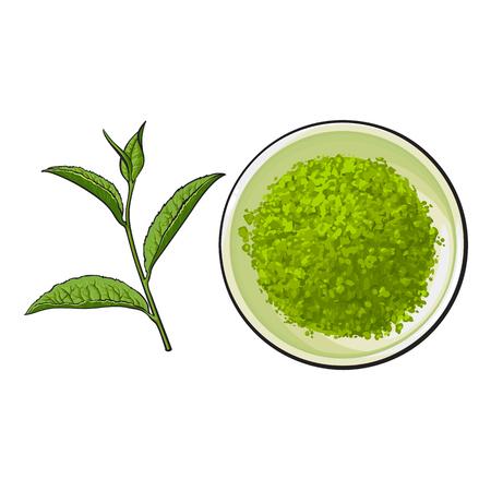 抹茶粉末と茶葉の描かれたボールを手、白い背景で隔離のスタイル ベクトル図をスケッチします。リアルな手描きの白いボウルと緑茶葉に抹茶粉末  イラスト・ベクター素材
